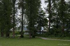 Vedder Park and Bridge